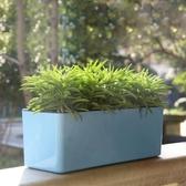 長方形懶人花盆自動吸水塑料加厚簡約長條花盆【英賽德3C數碼館】
