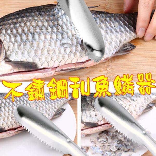 【刮魚鱗器《不銹鋼》】刮魚鱗器創意魚鱗刨去魚鱗器刷魚鱗批發
