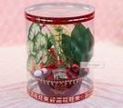 一定要幸福哦~~女方訂婚十二禮、蓮蕉、石榴、芋頭、鳳梨,(人造植物)婚俗用品