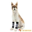 狗狗護腿防臟襪子寵物腳套卡通貓咪可愛防抓【小獅子】