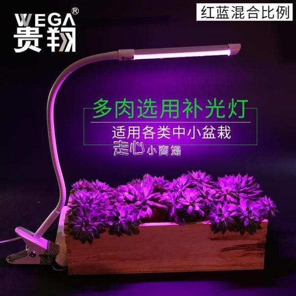 植物生長燈貴翔多肉上色補光燈LED全光譜植物燈生長燈花卉蘭花盆景桌面夾子 『獨家』流行館