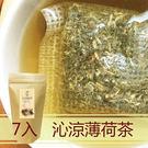 沁涼薄荷茶10gx7包入 涼茶 青草茶 時常熬夜最佳首選 鼎草茶舖