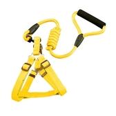 狗狗牽引繩基礎版兩件套 黃色M