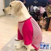 大型犬寵物衣服狗狗衣服金毛拉布拉多大狗中型夏季薄款【英賽德3C數碼館】