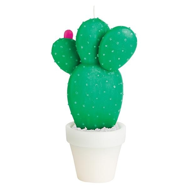 SUNNYLIFE Round Cactus Candle Large 大型闊葉仙人掌蠟燭