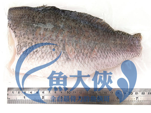 B1【魚大俠】FH111鮮美帶皮鱸魚片(200/250規格/片) 清蒸 紅燒 煮湯皆宜 術後進補