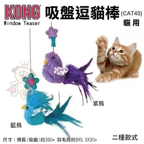 『寵喵樂旗艦店』美國KONG《Window Teaser吸盤逗貓棒》貓玩具(CAT45)