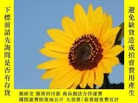 二手書博民逛書店Sunflowers:罕見Photos, Facts, and FictionsY360448 Leland