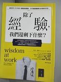 【書寶二手書T1/心理_HGW】除了經驗,我們還剩下什麼?:讓資深工作者邁入職涯高原期時