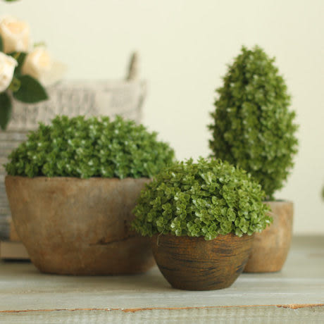 【扁款】綠色環保植物仿真盆栽辦公桌擺設擺件 萬年青