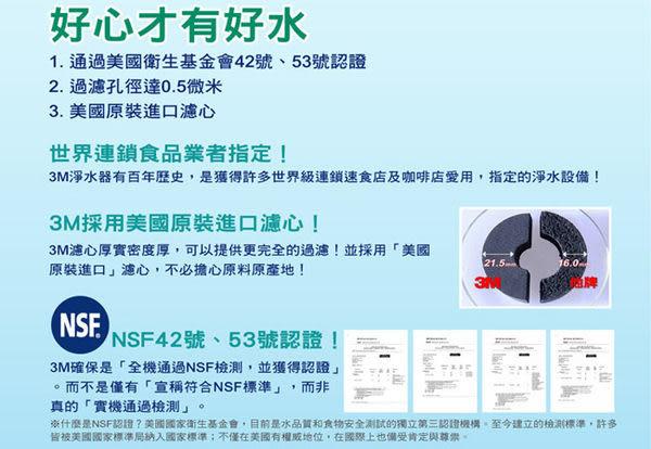 《超值2入》3M Filtrete DS02淨水器專用濾心DS02-R