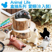 【Animal Life盒抽系列 愛睏(8入裝)】Norns 限量盒玩 無尾熊北極熊河馬黑猩猩巴哥犬隱藏 朝隈俊男