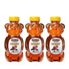 [COSCO代購] Kirkland 小熊造型蜂蜜 680客克x 3 入 _CA703761