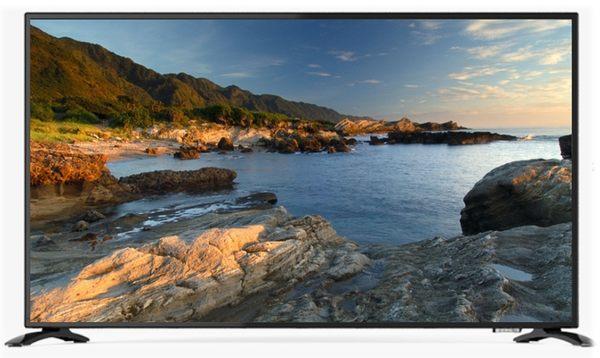 配送含基本安裝《贈2米HDMI線》鴻海 InFocus XT-50IP600 50吋4K連網智慧液晶電視