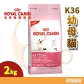 皇家K36幼母貓2kg【寶羅寵品】