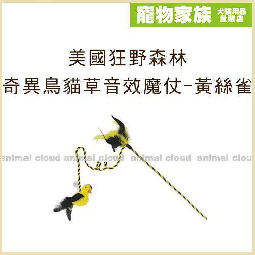 寵物家族-美國Play-N-Squeak狂野森林 奇異鳥系列貓草音效魔仗-黃絲雀