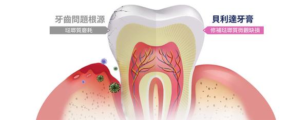 【貝利達】牙齦護理牙膏 75ml