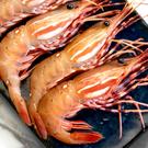 ㊣盅龐水產◇加拿大牡丹蝦Jumbo◇1kg±5%/盒◇零$1875元/盒◇生食甜嫩牡丹蝦 歡迎團購