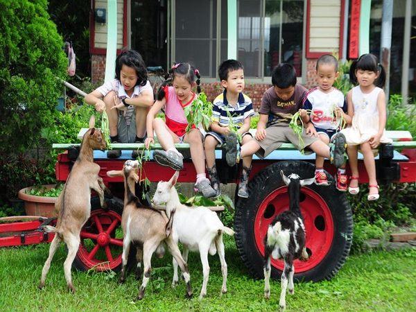 [高雄]農春鎮生態教育農場-精緻單人田園美食一日遊