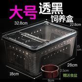 爬蟲飼養盒爬寵箱蠶寶寶蜘蛛角蛙守宮盒