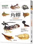 角蟬:不可思議的昆蟲