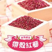 【愛上新鮮】台灣原生帶殼紅藜4包