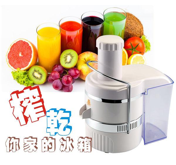 鳳梨牌專業級蔬果榨汁料理機CL-003AP1 《刷卡分期+免運費》
