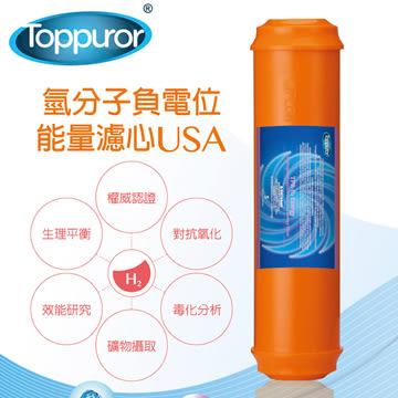 泰浦樂 Toppuror 水素水富氫離子能量濾心HE-100