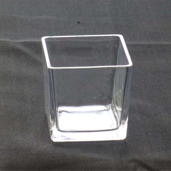 優質玻璃花瓶透明正方形方缸水培花瓶盆栽綠植盆花器插花器皿igo【蘇迪蔓】