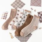 棕色系列小熊加厚大人中筒襪 大人襪 襪子 中筒襪