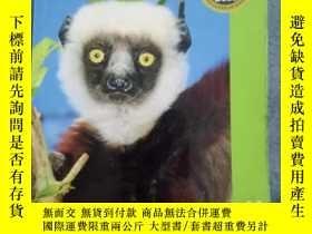 二手書博民逛書店Madagascar罕見(Bradt Travel Guide)