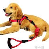牽引繩狗狗牽引繩鏈子項圈遛狗繩子寵物用品 喵小姐