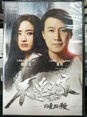 影音專賣店-P04-268-正版DVD-華語【不速之客】-黎明 韓彩英