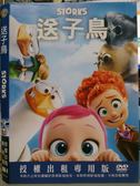 影音專賣店-B24-069-正版DVD*動畫【送子鳥/Storks】-適合闔家觀賞