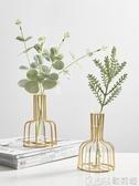 北歐ins風金色小清新花瓶干花擺件 客廳餐桌植物花插花桌面裝飾品 歌莉婭