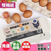 【下單後10-14天出貨】【咱兜ㄟ養雞場】動物福利雙機能雞蛋 紅殼 40顆宅配禮盒組 10入/4盒