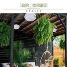 太陽能電燈家用戶外室內超亮客廳照明迷你新...