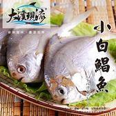 嚴選新鮮野生 小白鯧 ( 100g±5%_一公斤 ) 【大溪現流】