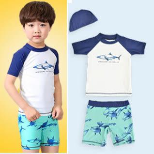 鯊魚短袖泳衣沖浪服+泳褲+泳帽  寶寶泳衣 橘魔法 玩水褲 現貨 男童 嬰兒泳衣