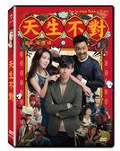 天生不對DVD(周渝民/薛凱琪/鄭中基)