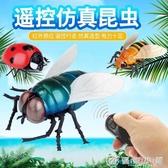 遙控蒼蠅昆蟲動物模型男孩新奇玩具搞怪整蠱禮物仿真瓢蟲最低價 優家小鋪