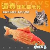 逗貓玩具貓咪互動寵物玩具 貓薄荷仿真鯽魚【奇趣小屋】
