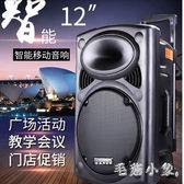 戶外音響12寸充電移動拉桿電瓶大功率便攜式音箱 ys5459『毛菇小象』