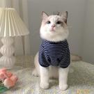 韓版IG寵物狗狗貓咪衣服冬裝保暖可愛小奶貓條紋加絨打底衫【小狮子】
