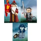 樂高LEGO Minifigures 哈利波特 第二彈 人偶組 人偶包 2號 6號 14號 拆袋檢查全新售 71028 TOYeGO 玩具e哥