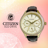 CITIZEN 星辰 手錶專賣店 ED8162-03P  女錶 石英錶 皮革錶帶 金 三眼指針 礦物玻璃 防水