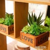 創意田園模擬多肉植物盆栽花藝裝飾品假花桌面小擺件 韓語空間