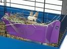 HR-5 老鼠兔子乾草架 小動物牧草架 牧草架子 小動物蔬果餵食架   美國LIXIT®立可吸