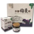 金德恩 台灣製造 1盒6瓶 扶元堂鮮釀梅棗精
