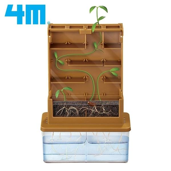 耀您館|4M綠色科學Green Science植物迷宮Grow-A-Mate認識植物生長00-03352《15年德國紅點獎